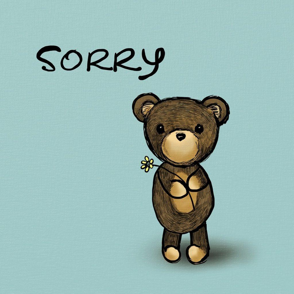 Make a sincere apology